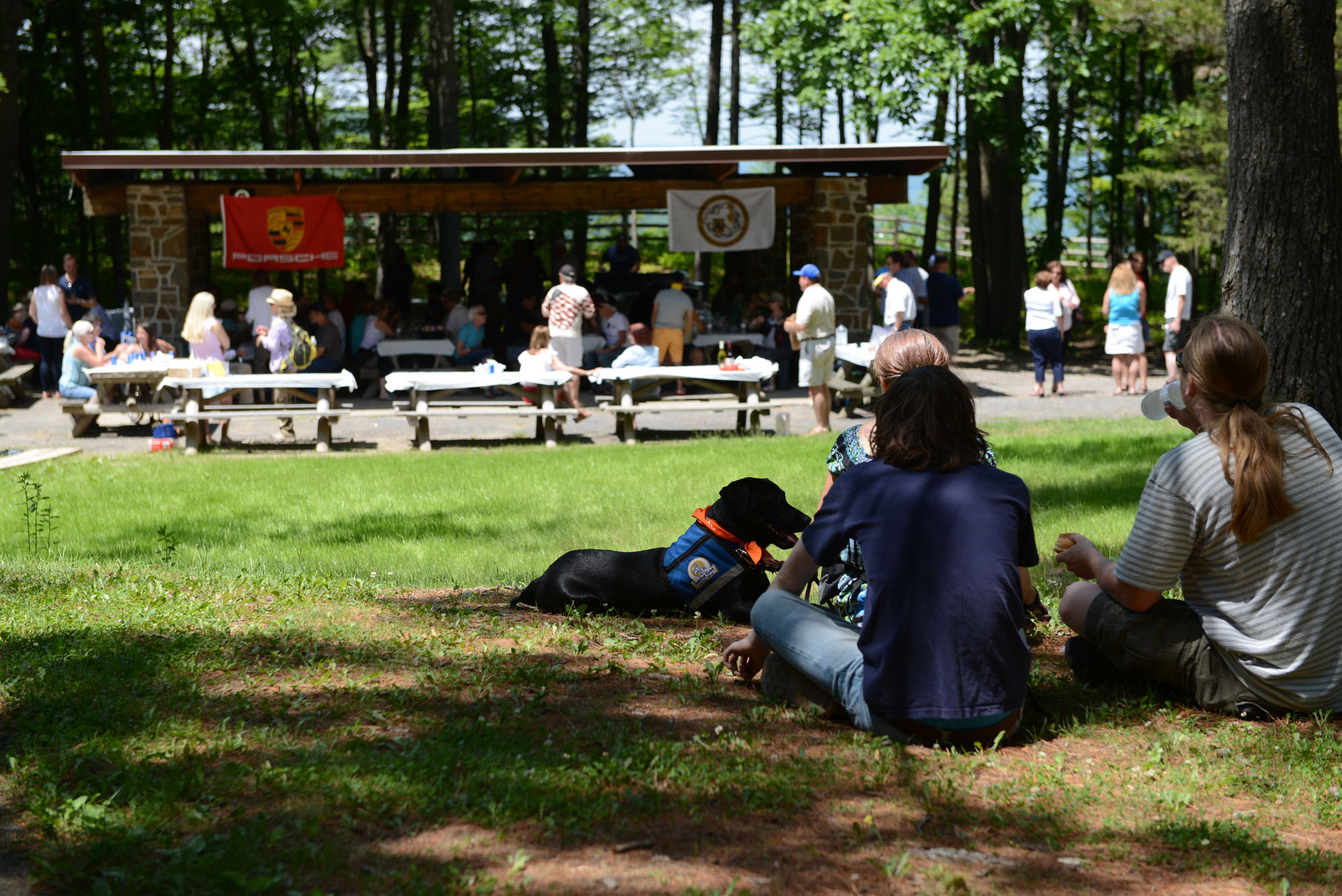 picnic12015